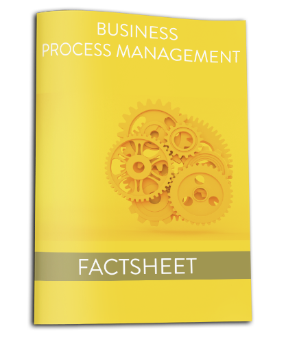 Factsheet Business Process Management