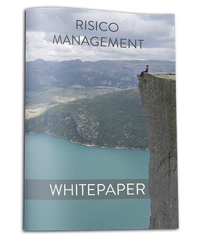 Whitepaper Risicomanagement